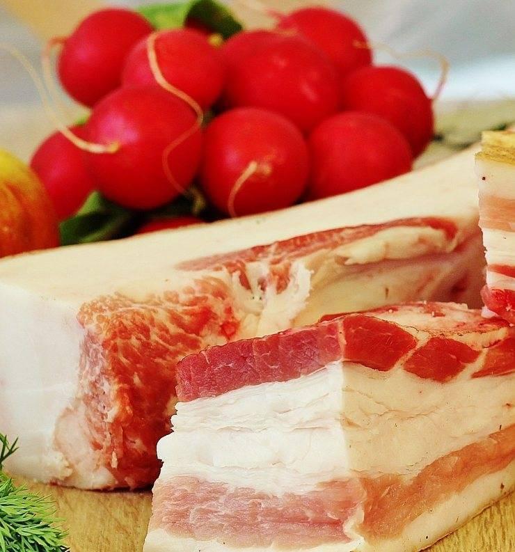 Сало и холестерин – можно ли есть сало при повышенном холестерине