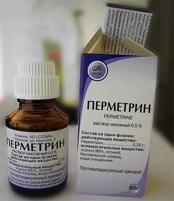 Как лечить чесотку в домашних условиях с помощью препаратов и народных рецептов
