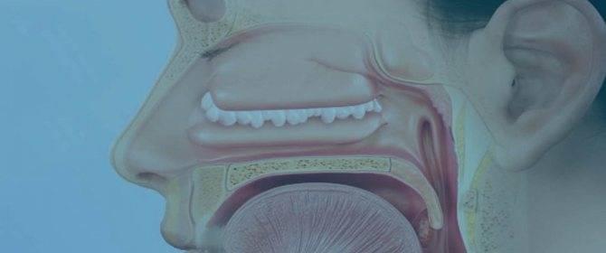 лекарство от полипов в носу спрей