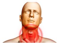 Гонококковый фарингит - симптомы болезни, профилактика и лечение гонококкового фарингита, причины заболевания и его диагностика на eurolab