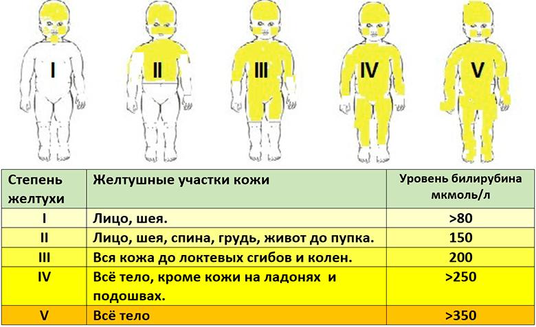Как лечить желтуху народными средствами | рецепт здоровья