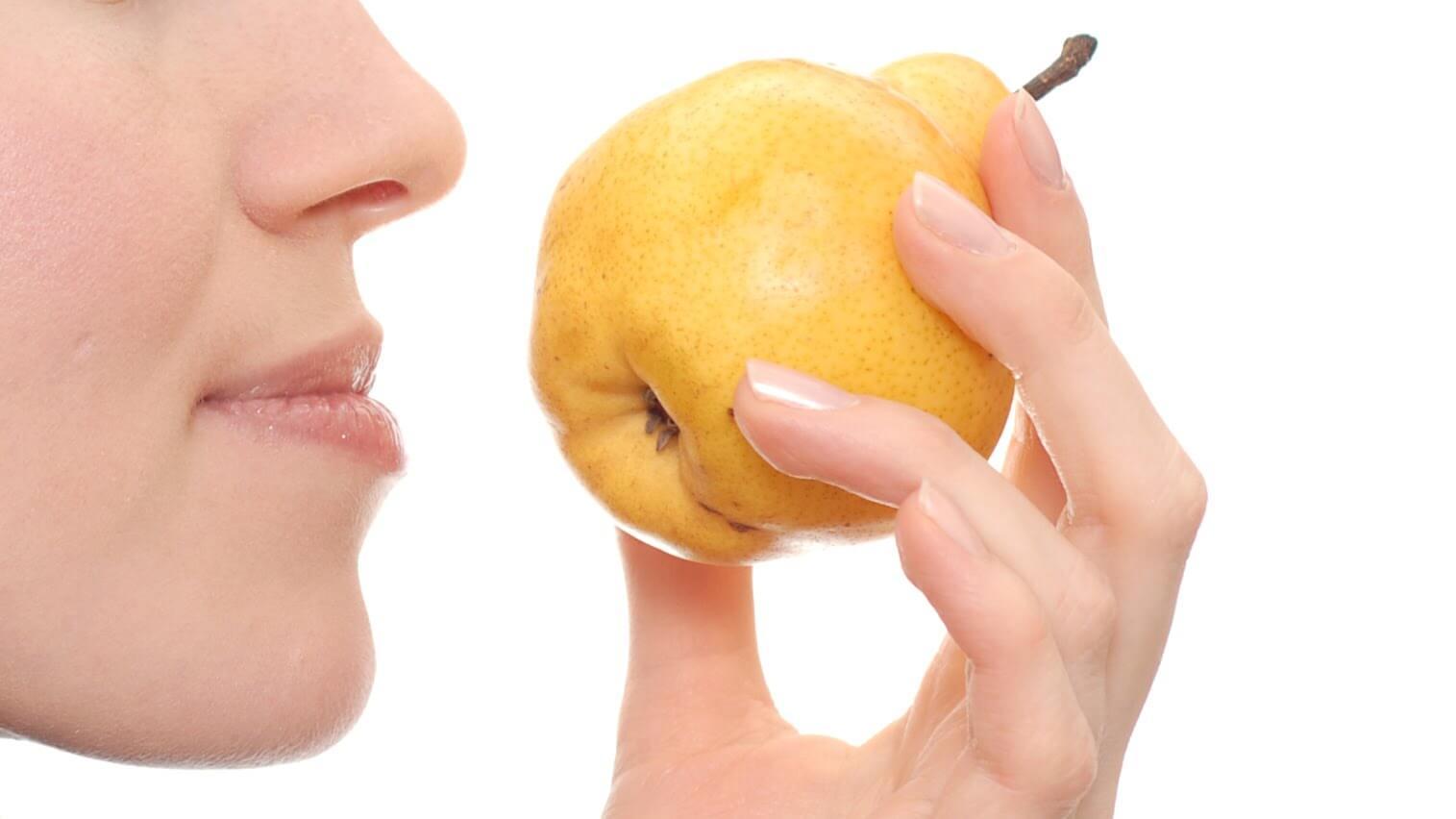 Пропало обоняние и вкус при насморке: причины и правила лечения