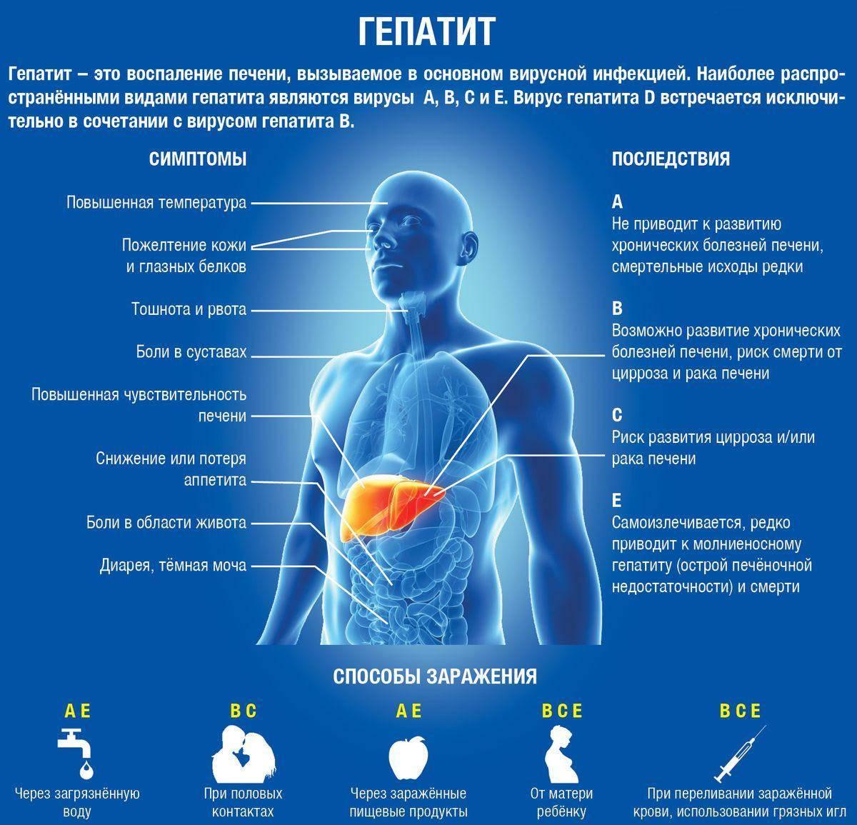 Как передается гепатит a, b, c, d, e, f (воспаление печени)? виды гепатита