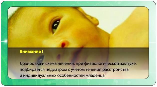 лечение желтухи у новорожденных в домашних условиях