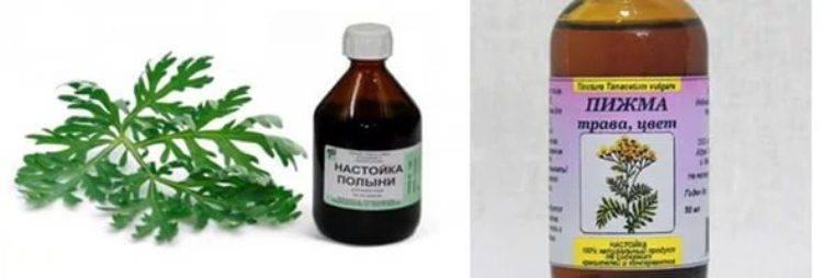 Паразиты - запись пользователя ирина (id1110899) в сообществе семейное здоровье в категории гастроэнтерология - babyblog.ru