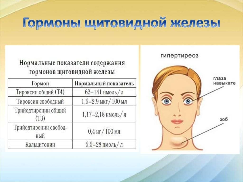 Уровень гормонов при беременности: эндокринология и беременность