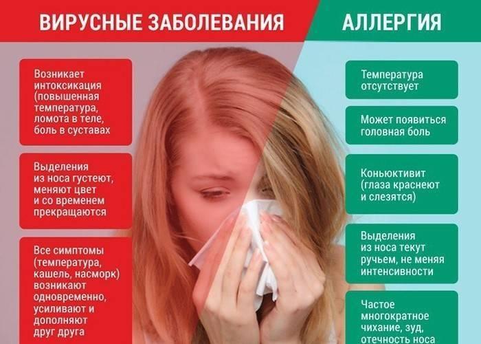 Кашель аллергический или простудный — особенности, признаки, отличия