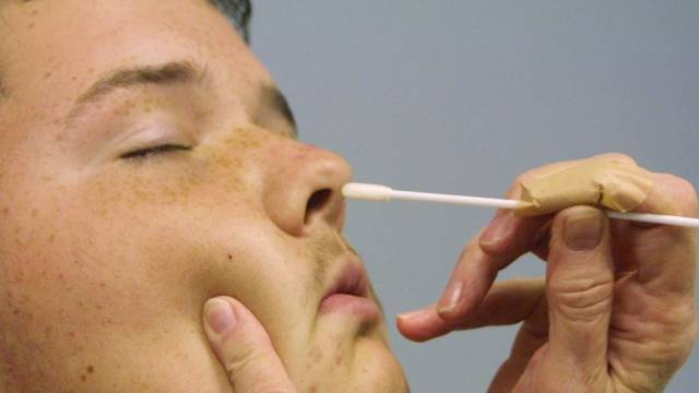 Золотистый стафилококк в носу у ребенка