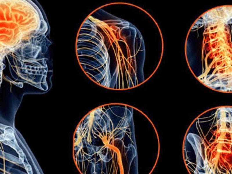 что такое невропатия