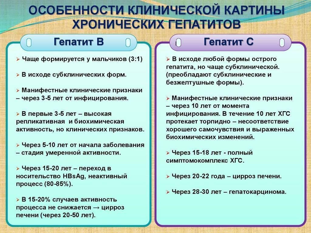 Гепатит а и е: чем отличаются и чем похожи заболевания, пути передачи, особенности течения и вакцинации