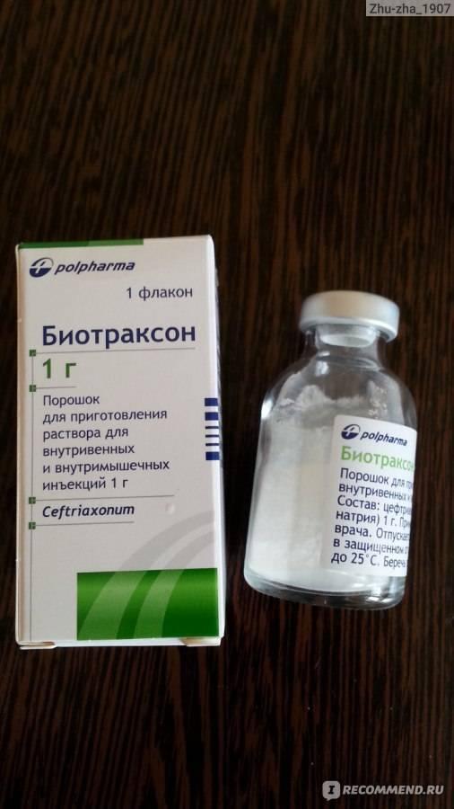 Какие антибиотики принимать при гнойной ангине у взрослых?