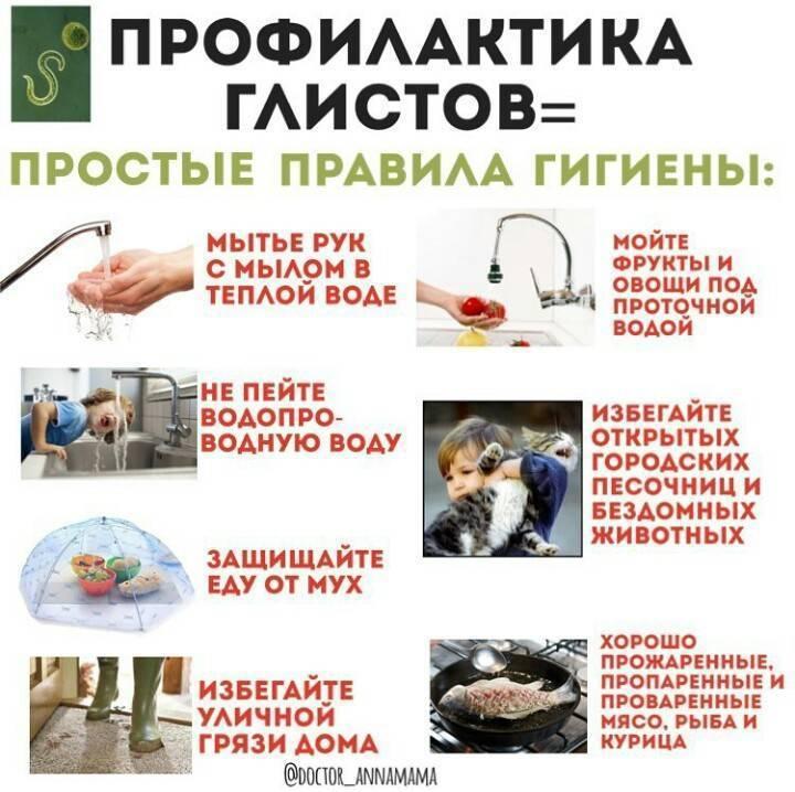 профилактика гельминтов у человека