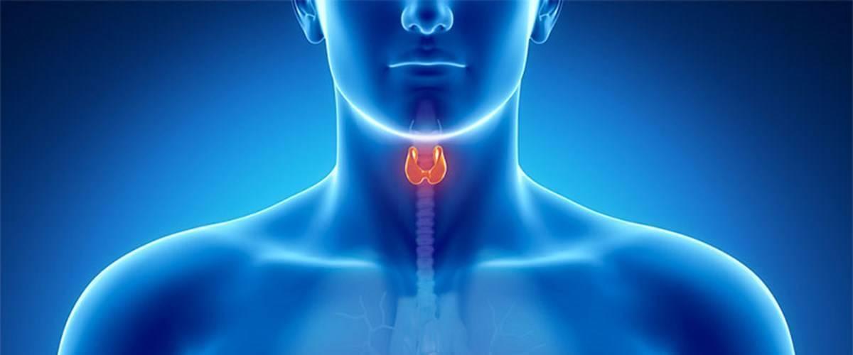 Кальцинаты в щитовидной