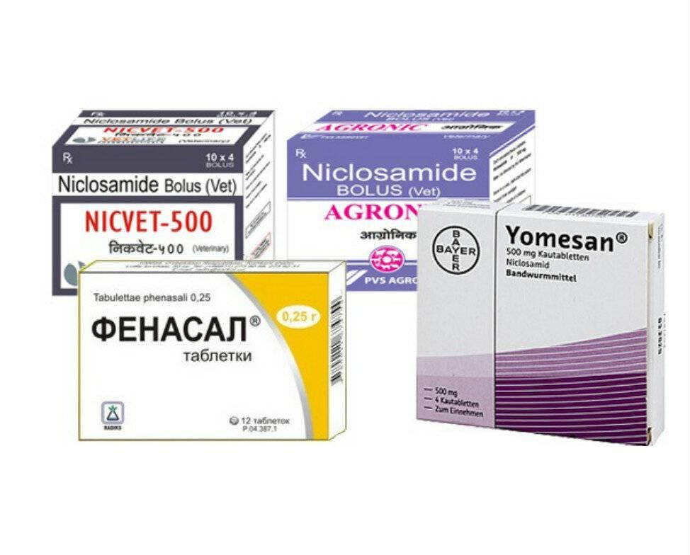 как вывести глисты у человека таблетки