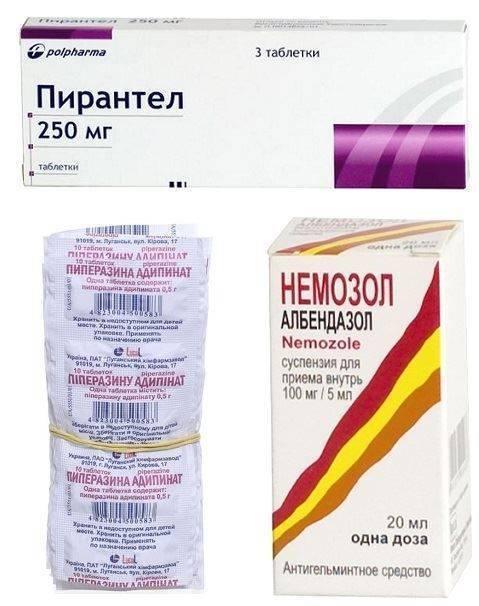 таблетки для профилактики глистов для взрослых