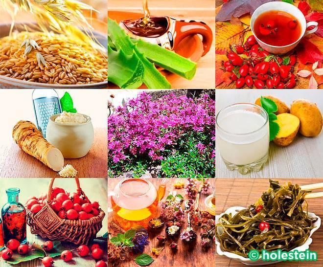 Лечение атеросклероза сосудов народными средствами в домашних условиях