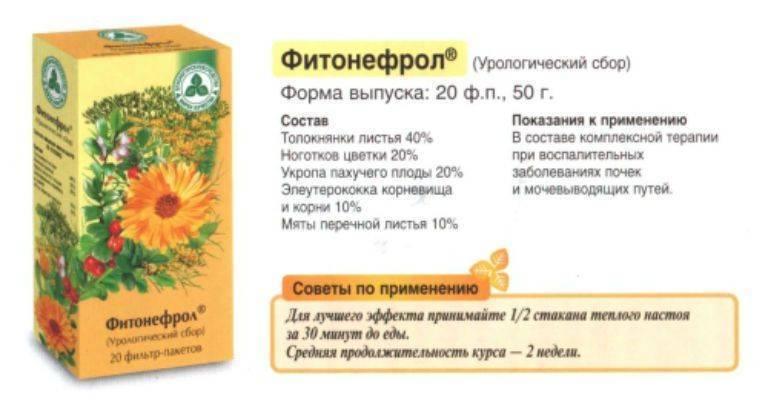 Травы при цистите: мочегонные народные средства против воспаления почек