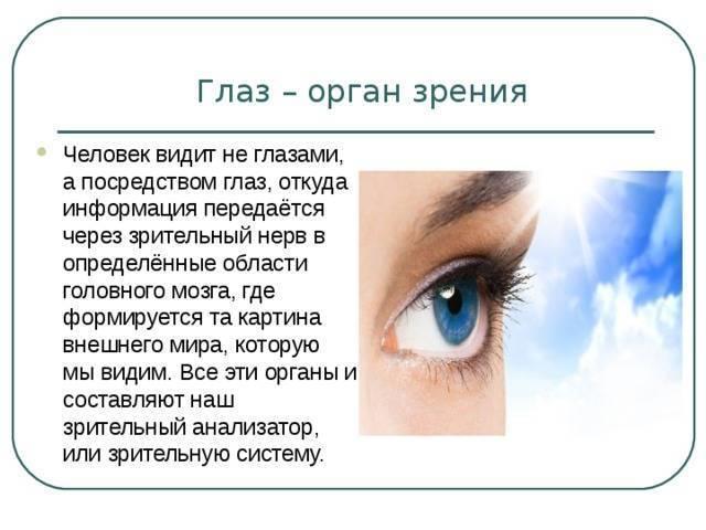 сколько кадров в секунду воспринимает человеческий глаз