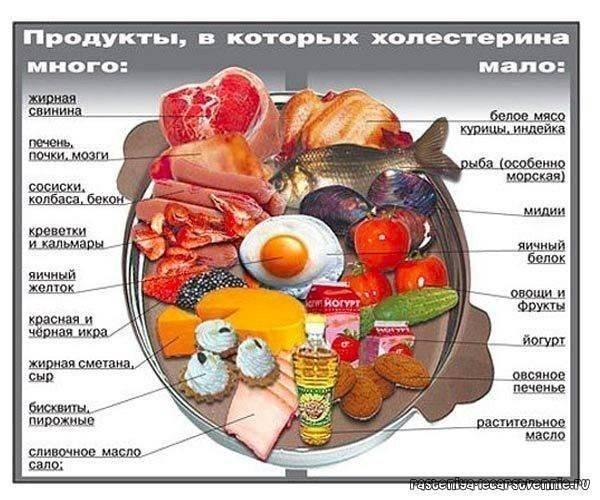 Сыр, творог при повышенном холестерине: какой можно есть