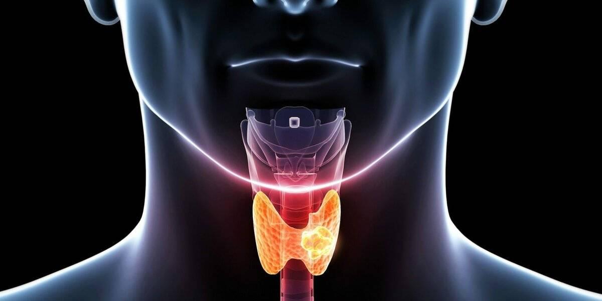 аит щитовидной железы лечение