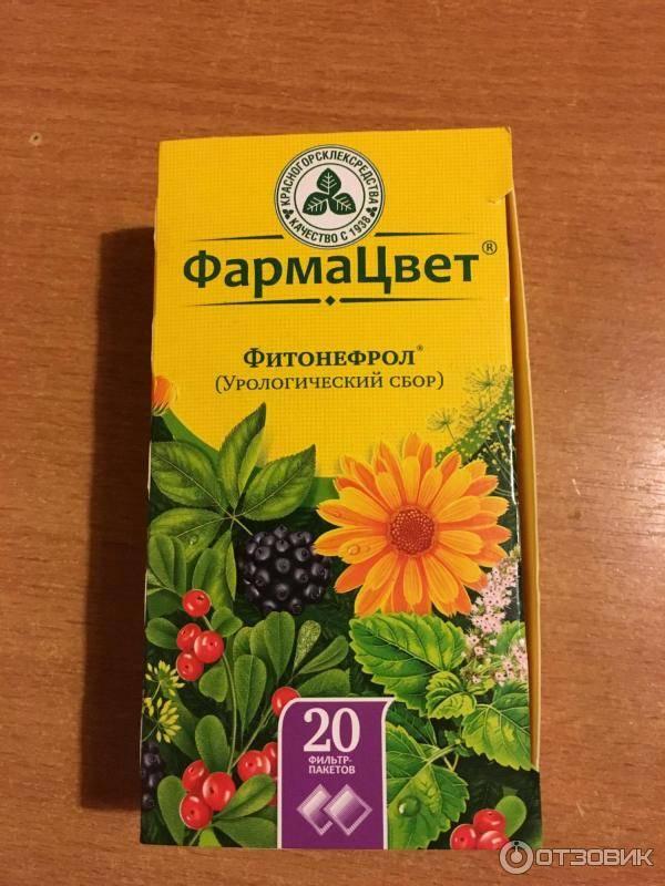 Травы для снижения холестерина