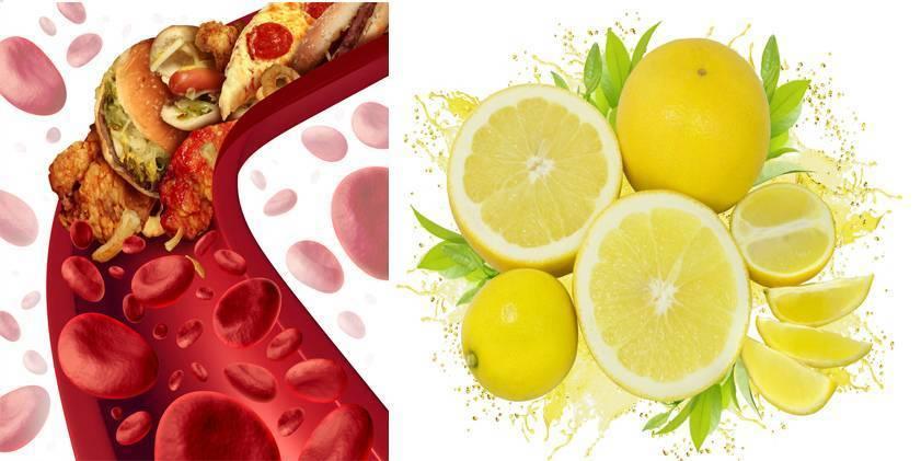 Мед, чеснок и лимон от холестерина