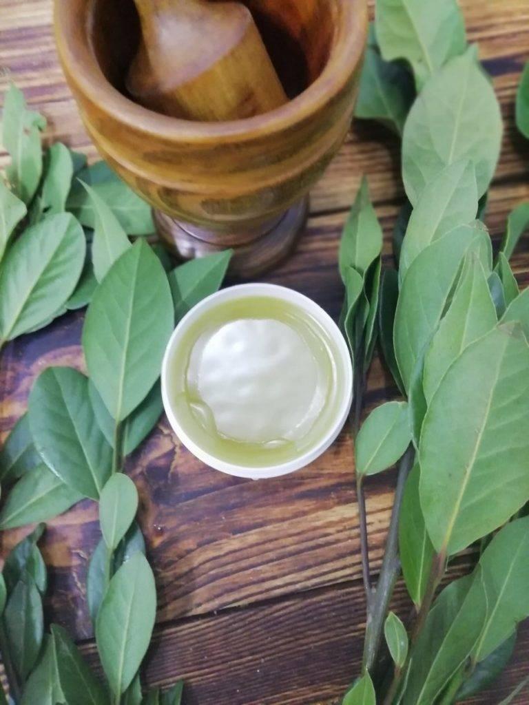 Лечение цистита лавровым листом заодин день— рецепт
