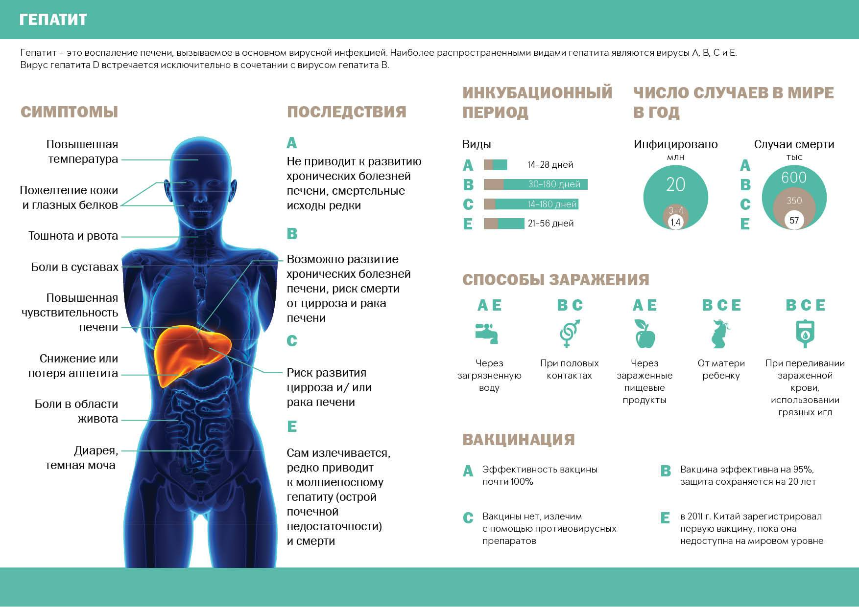 гепатит в сколько живут