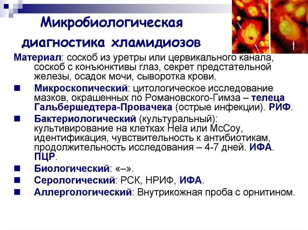 Хламидиоз у женщин и у мужчин: признаки, симптомы и лечение