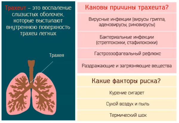 Причины и лечение хронического кашля у взрослых и детей