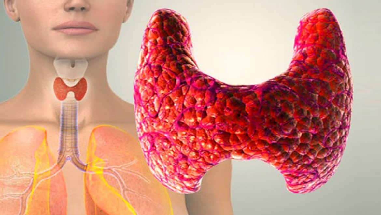 Как здоровье щитовидной железы влияет на беременность и развитие ребенка