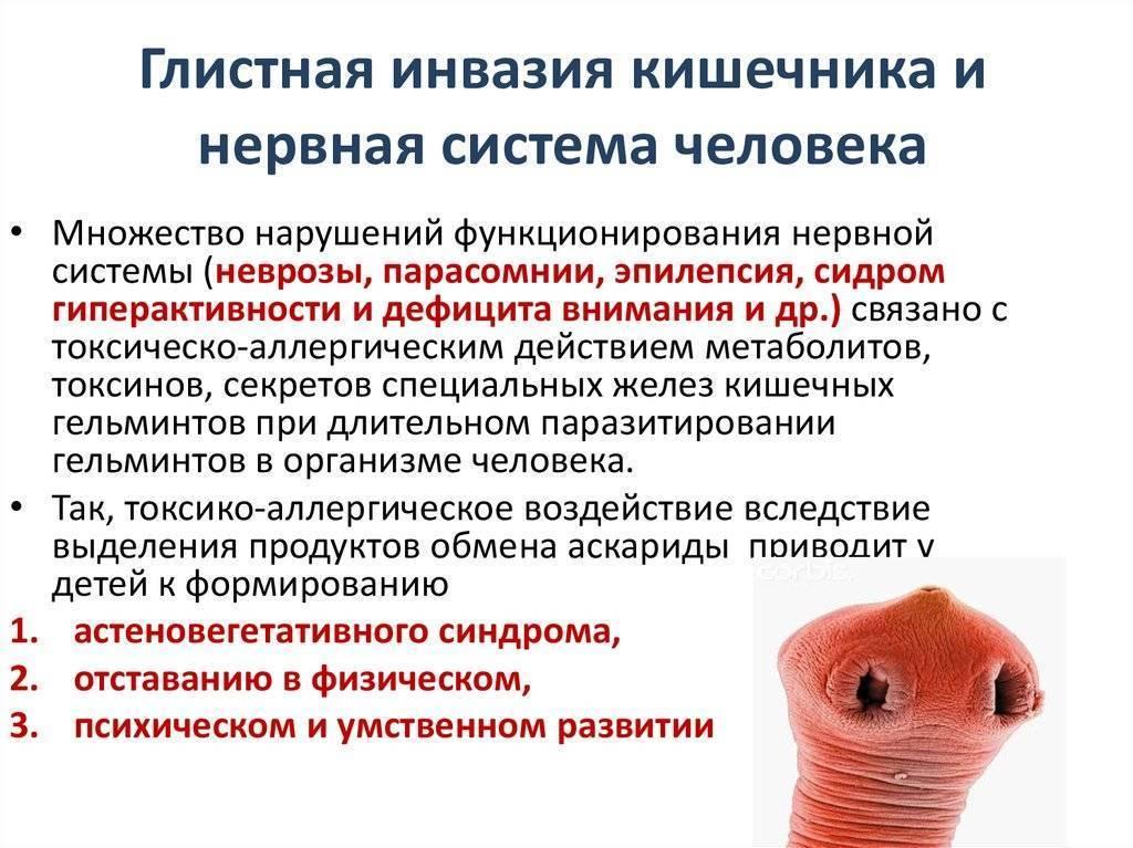 Гельминты у человека: признаки, симптомы и лечение