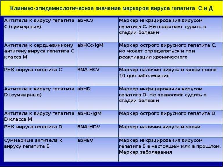 антитела в крови гепатит в