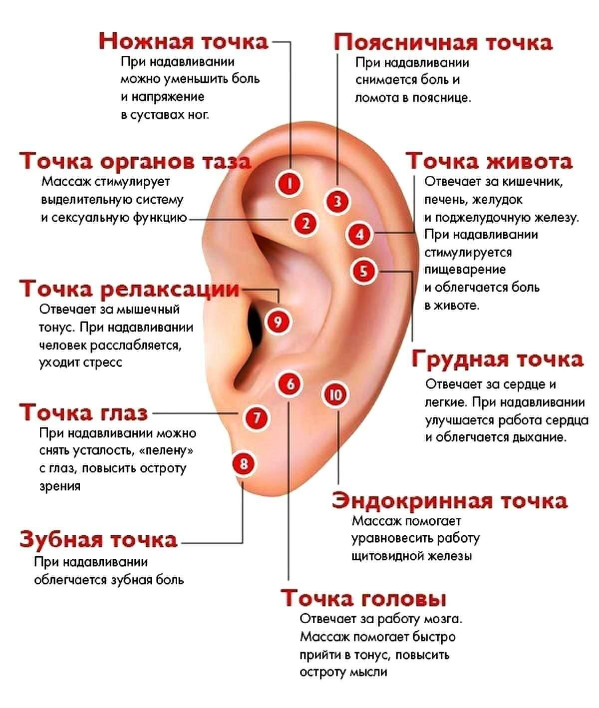 Точки на ушах от гипертонии