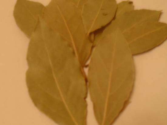 Лавровый лист от насморка