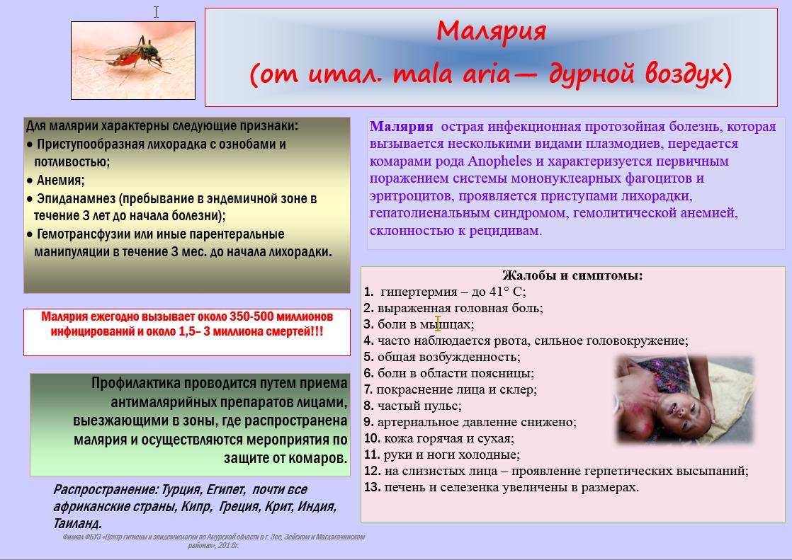 Малярия - симптомы, профилактика и методики лечения
