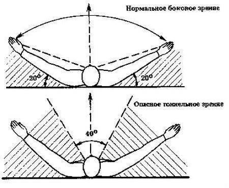 боковое зрение у мужчин