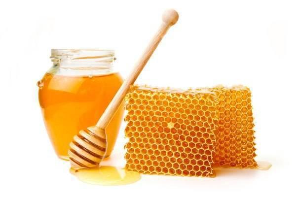 Мед – рецепты для лечения насморка и гайморита