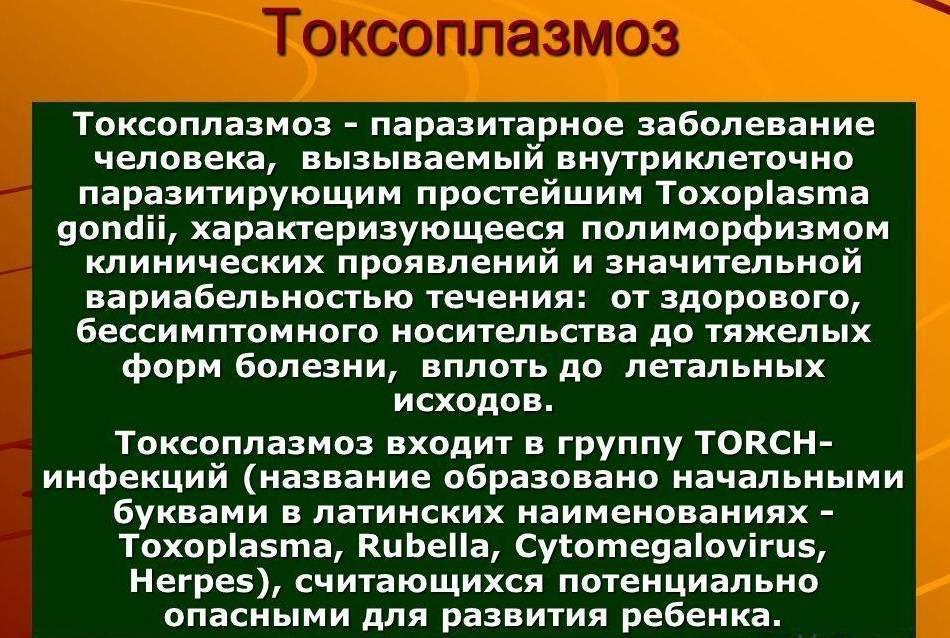 токсоплазмоз у человека