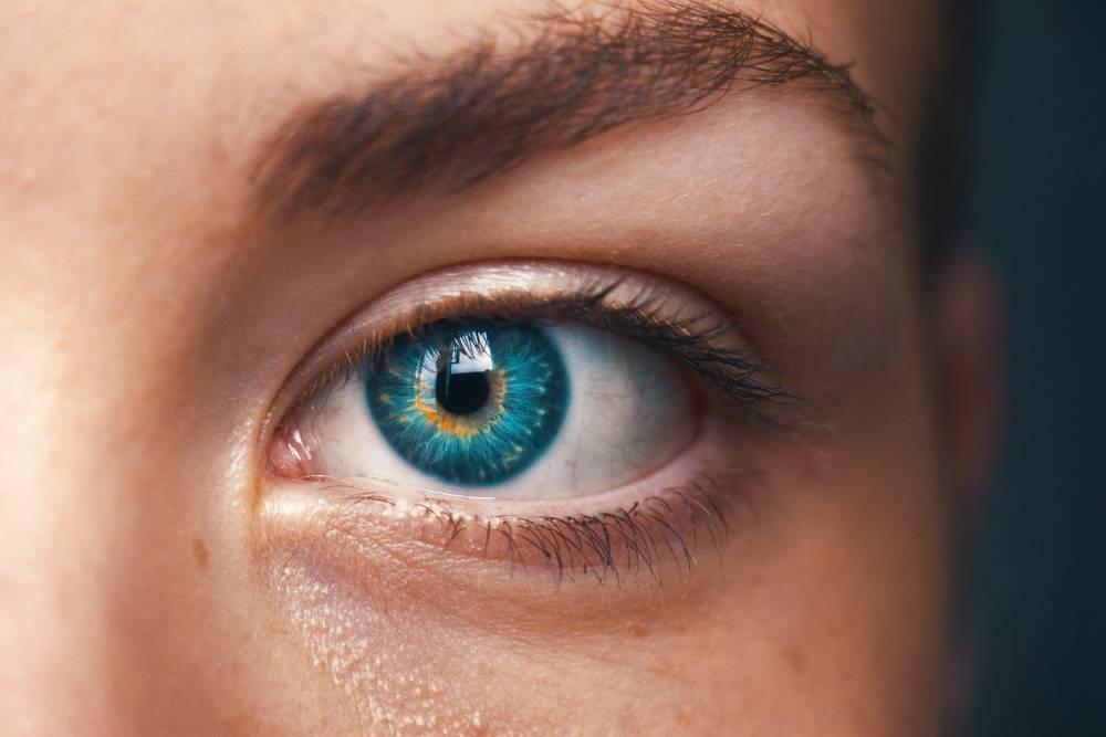 где находится зрачок глаза