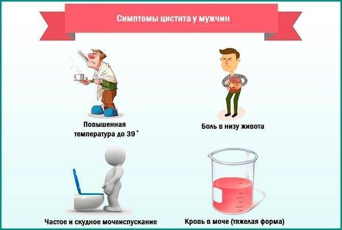 Бактериальный цистит у женщин. мужчин, детей: лечение (препараты), симптомы, причины