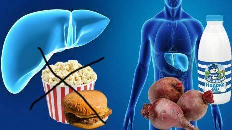 Антибиотики и печень