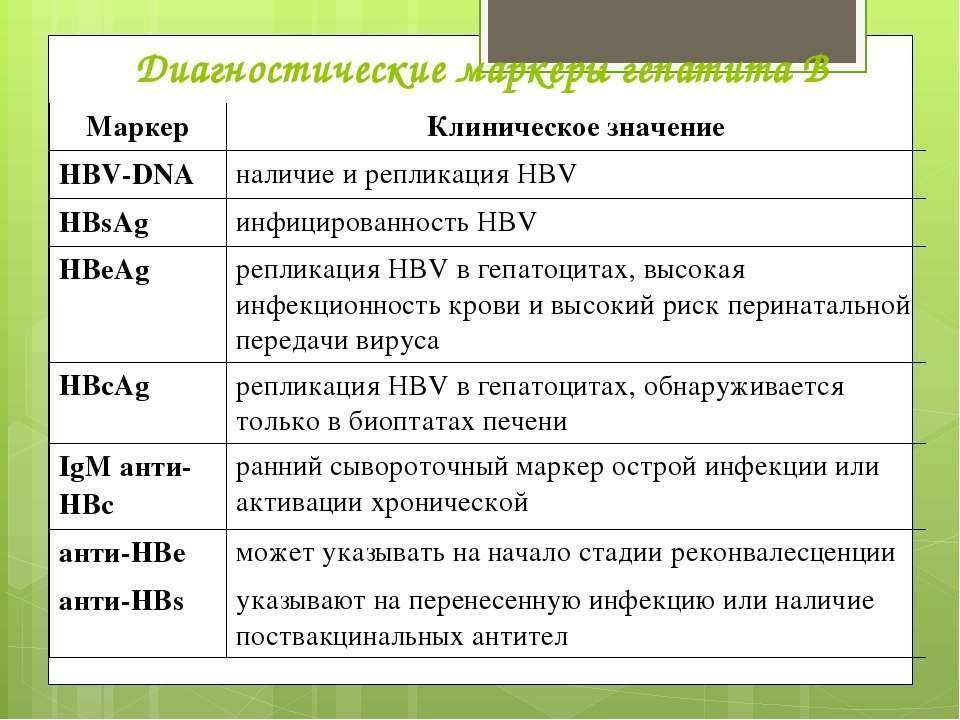 антитела к гепатиту в