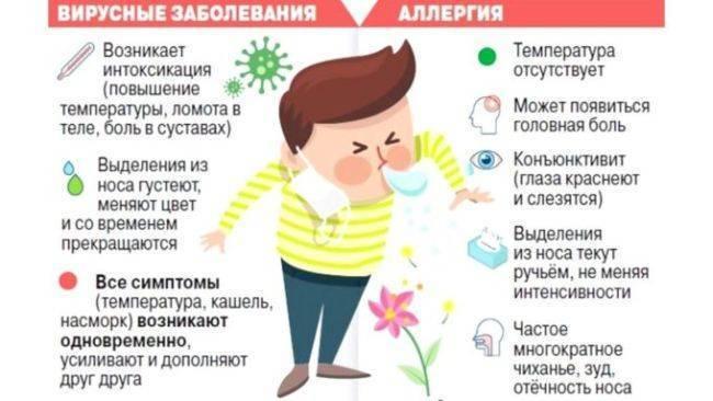 Отличия аллергического насморка от простудного