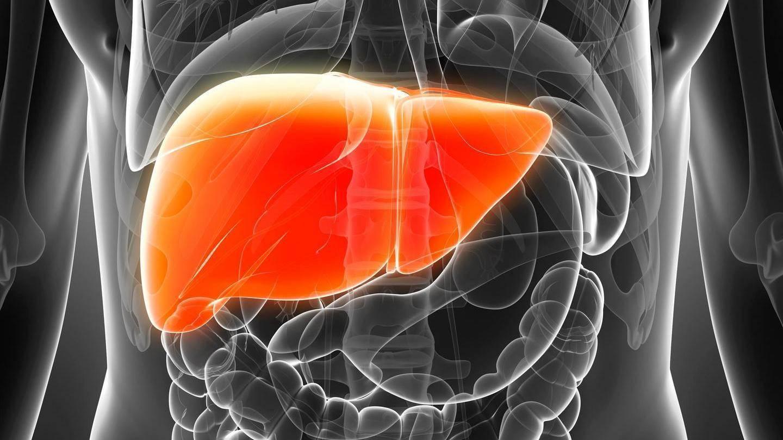 Хронический токсический гепатит симптомы и лечение