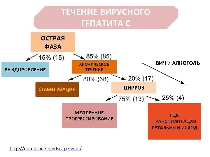Гепатит в: есть ли шансы на нормальную жизнь? сколько можно прожить с hbv