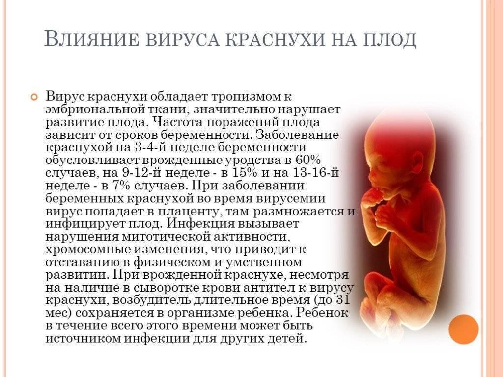 Рецидив герпеса на ранних сроках беременности