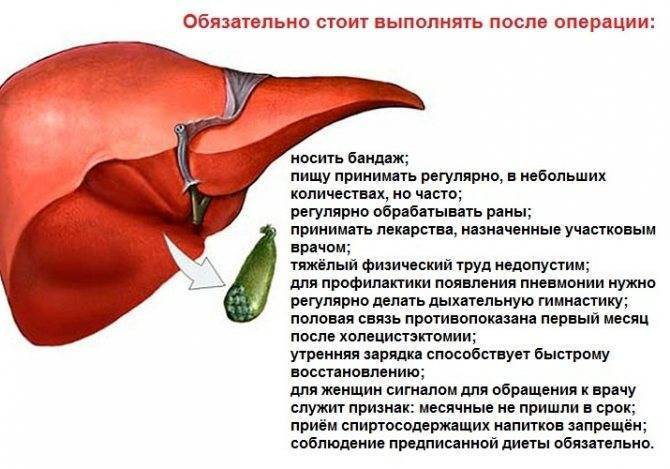 Особенности питания после лапароскопического удаления желчного пузыря