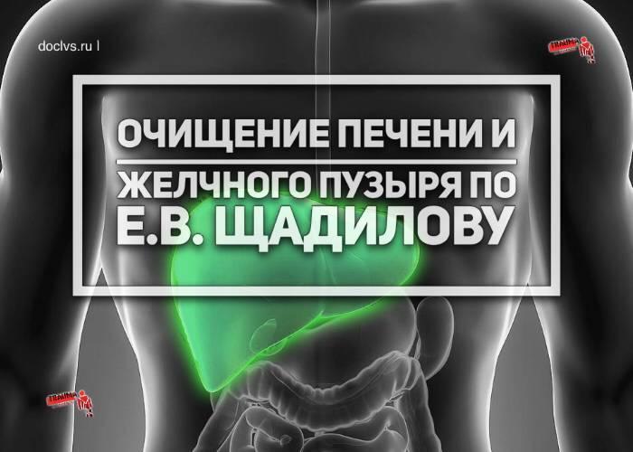 Чистка желчного пузыря средствами официальной и народной медициныдиагностика и лечение печени и желчного пузыря
