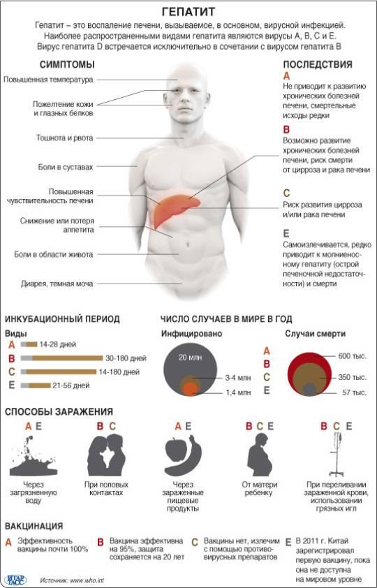 гепатит с инкубационный период симптомы